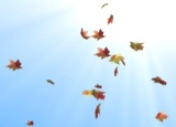 Thumbnail for: Falling leaves with Trapcode Particular